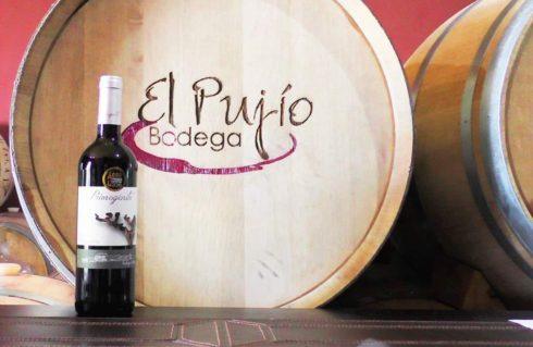 Packaging Bodega El Pujío